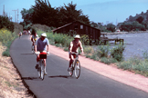 Picture of people biking. Photographer: Linda Bartlett